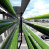 Freeway Algae Garden Turns CO2 Emissions Into Energy