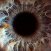 These 14 Incredible Photos Demonstrate The Complexity of The Human Eyes