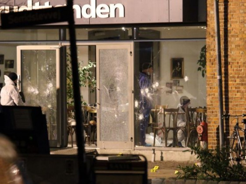 Danish Premier Says Gunman Probably Wasn't Part of Cell