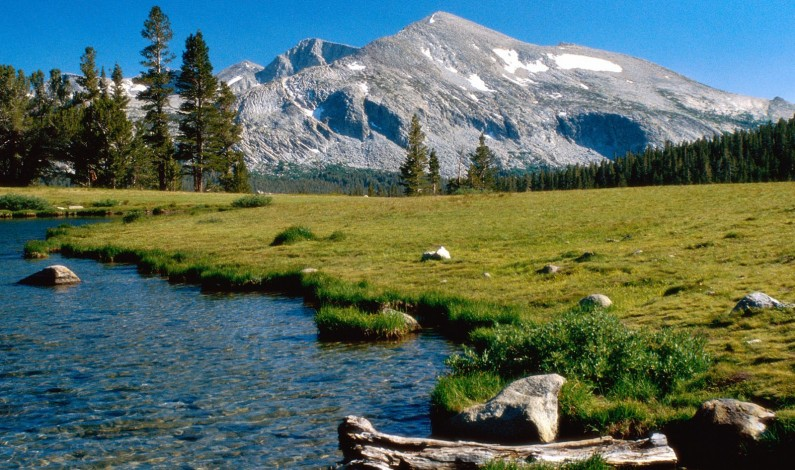 Senators Just Voted To Sell Off Americas Public Lands To The Highest Bidder